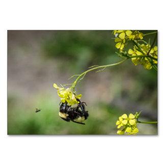 Tarjeta Manosee la abeja