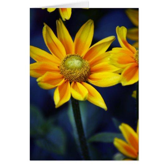 Tarjeta Margarita amarilla