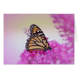 Tarjeta Mariposa de monarca de septiembre