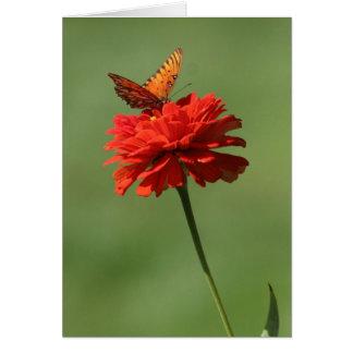 Tarjeta Mariposa en la flor