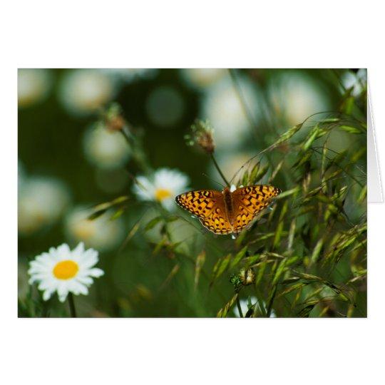 Tarjeta Mariposa pacífica del Fritillary