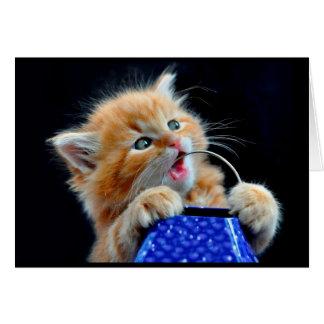 Tarjeta Masticación linda del gatito