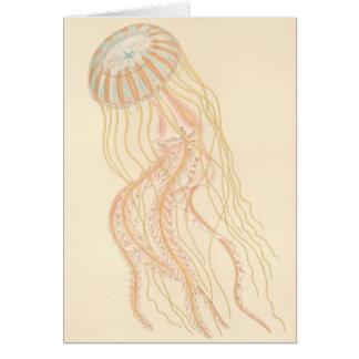 Tarjeta Medusas