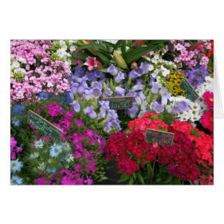 Tarjeta Mercado de la flor