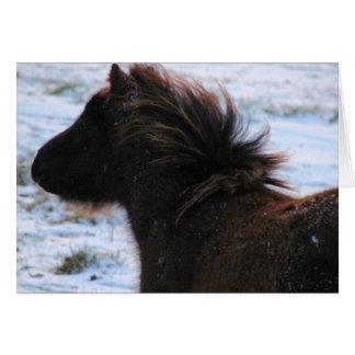 Tarjeta Mini potra en el invierno, navidad