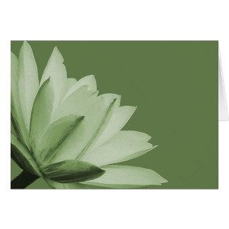 Tarjeta Moda de la foto de la flor del lirio de agua