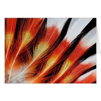 Tarjeta Modelo de la pluma del Cockatoo