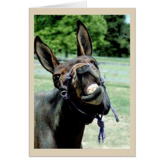 Tarjeta Mula de risa