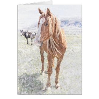 Tarjeta Mustango del caballo salvaje en el invierno (acebo