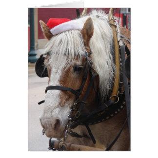 Tarjeta Navidad belga del caballo de proyecto que saluda