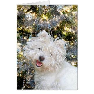 Tarjeta Navidad de Westie
