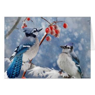 Tarjeta Navidad del arrendajo azul