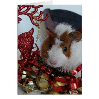 Tarjeta Navidad del conejillo de Indias