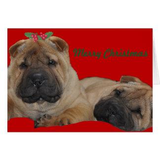 Tarjeta Navidad del perrito del acebo de Shar Pei
