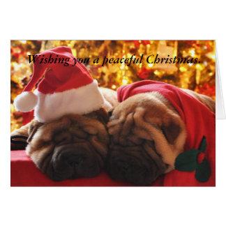 Tarjeta Navidad pacífico de Shar Pei