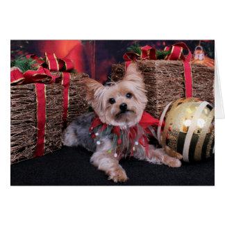 Tarjeta Navidad - Yorkshire Terrier - Vinnie