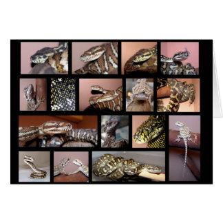 Tarjeta Negro del collage del reptil de Steph
