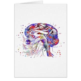Tarjeta Nervios craneales del cerebro, nervios craneales