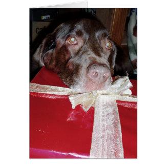 Tarjeta ¡No olvide a sus mascotas para el navidad!