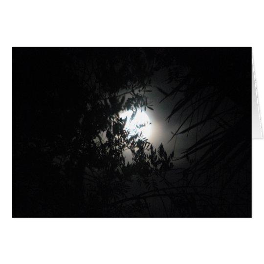 Tarjeta Noche misteriosa #1