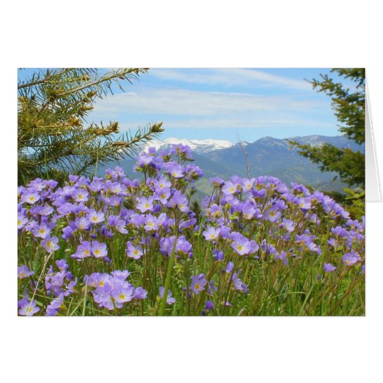 Tarjeta Nomeolvides alpina