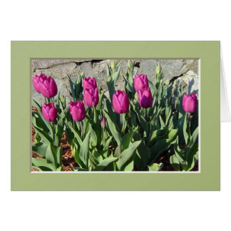 Tarjeta Notecard púrpura de los tulipanes