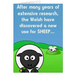 Tarjeta Nuevas ovejas del uso 4