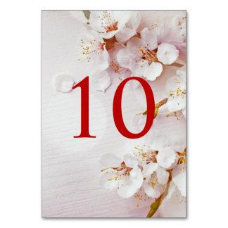 Tarjeta Números elegantes de la tabla de la flor de cerezo