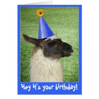 Tarjeta o invitación divertida de cumpleaños de la
