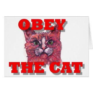 Tarjeta Obedezca el gato