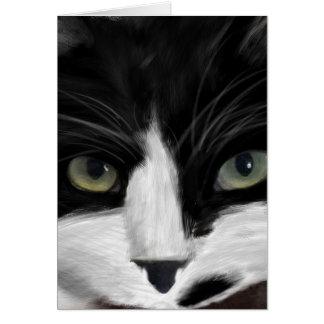 Tarjeta observación del gato