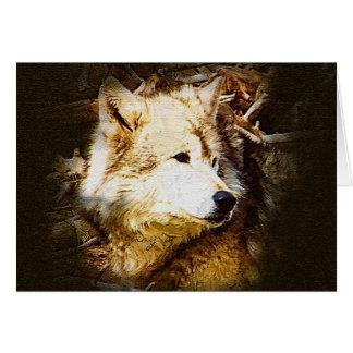 Tarjeta Observación del lobo gris