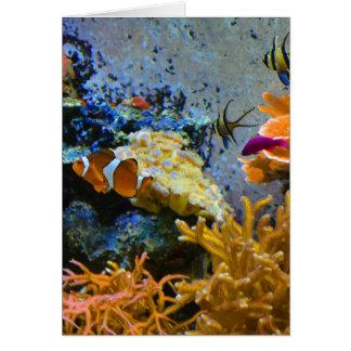 Tarjeta océano del coral de los pescados del filón