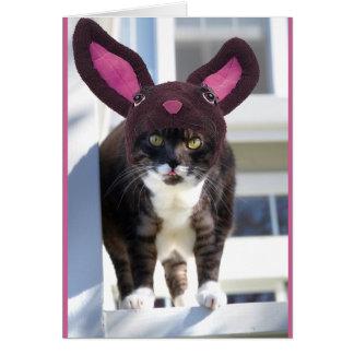 Tarjeta Oídos del conejito del gato del gatito que llevan