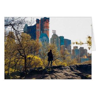 Tarjeta Opinión NYC del Central Park de la casa de Essex