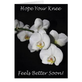 Tarjeta Orquídea del blanco de la cirugía de la rodilla