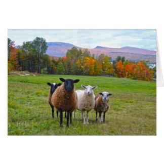 Tarjeta Ovejas de Vermont del feliz cumpleaños en otoño