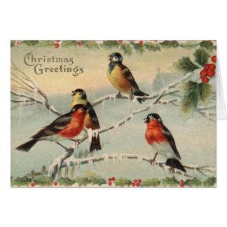 Tarjeta Pájaros del navidad del vintage