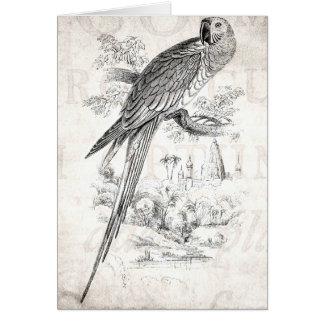 Tarjeta Pájaros verdes de Maccaw del pájaro del Macaw de