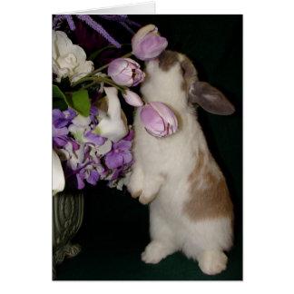 Tarjeta Pare y huela las flores