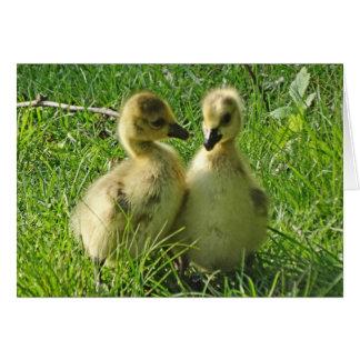 Tarjeta Pares amarillos lindos de Gosling de los gansos de