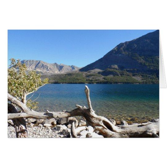 Tarjeta Parque Nacional Glacier del lago st Mary