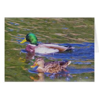 Tarjeta Patos del pato silvestre