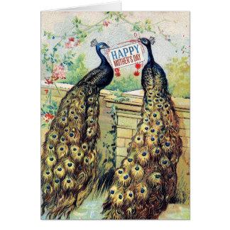 Tarjeta Pavos reales del vintage - el día de madre feliz