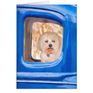 Tarjeta pensamiento en usted-Bichon perro de Frise en
