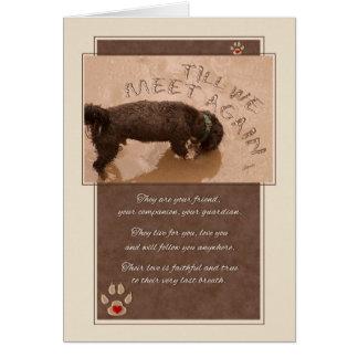 Tarjeta Pérdida de una condolencia del mascota del perro -