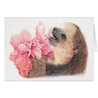 Tarjeta Pereza que come la flor del hibisco