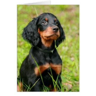 Tarjeta Perrito atento del perro negro del organismo de