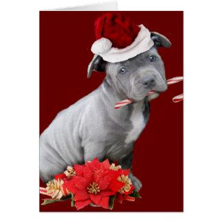 Tarjeta Perrito de Pitbull del navidad