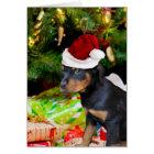 Tarjeta Perrito de Rottweiler del navidad
